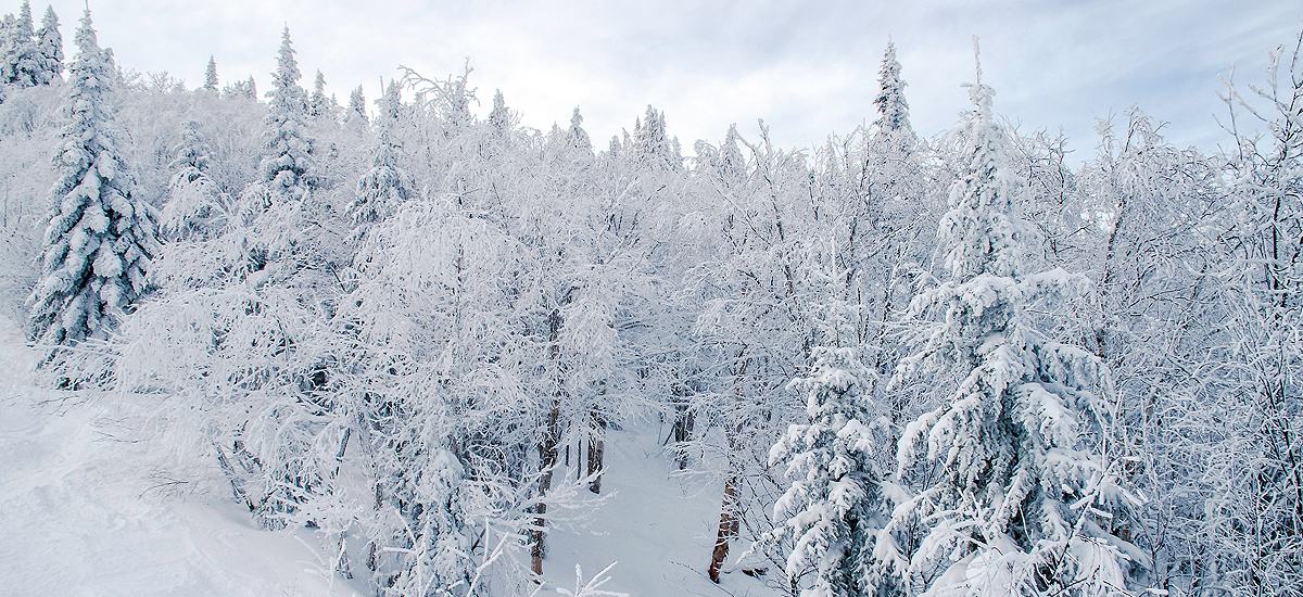 Winter Love in Photos – Le Massif de Charlevoix